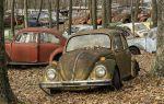 Фольксваген жук (volkswagen beetle) — модельный ряд (старые и новые модели), технические характеристики, отзывы владельцев, фото